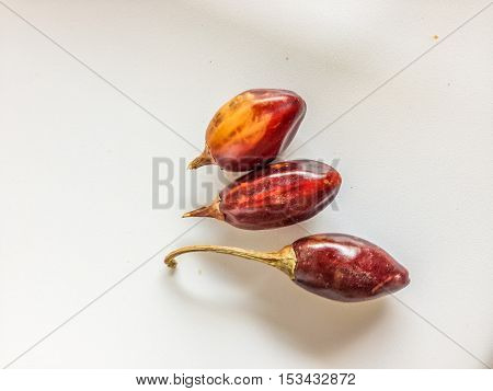 Three Red Cascabel Chiles