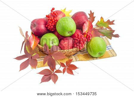 Pile of a red and green apples among autumn leaves and bunches of rowan in a small wicker basket on a light background