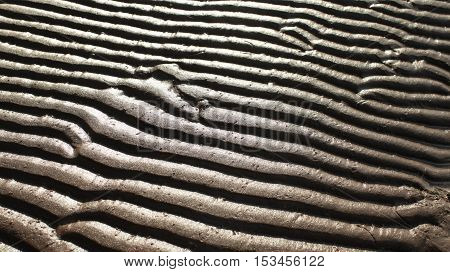 the sand waves abstract background pattern zebra