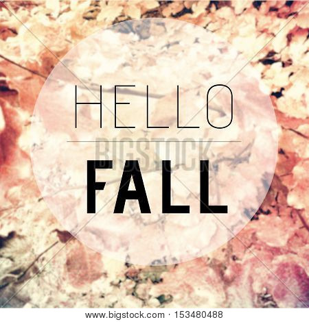Hello Fall Text On Blurred Background