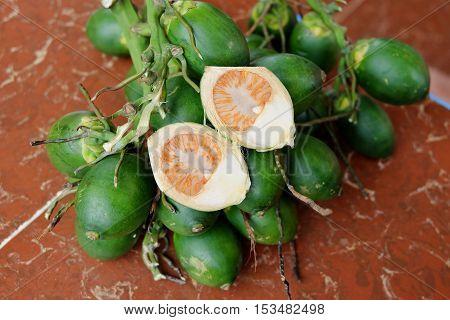 Fresh areca nut. Betel nut fresh betel palm.