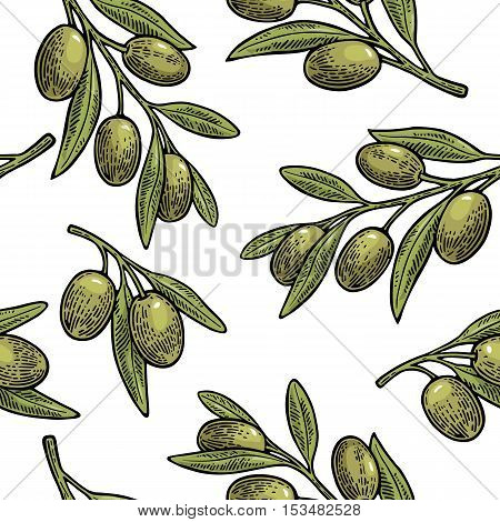 Seamless pattern Olives on branch with leaves. Hand drawn design element. Vintage color vector engraving illustration for logotype poster web. Isolated on white background.