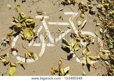 Bicycle road sign on asphalt with fallen leaves.