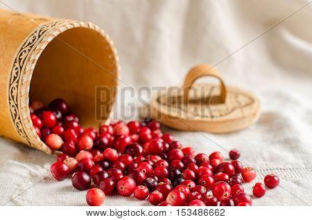 Red cranberries. Birch bark basket. Light linen tablecloth. Place for text.