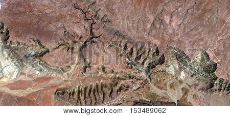 Stone plant fantasy, Abstract photography of landscapes of deserts of Africa from the air, plants,flowers, leaves,roots stone,