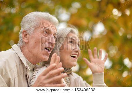 Portrait of a surprised happy senior couple in the autumn park