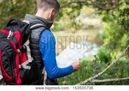 Rear view of male hiker looking at map in forest