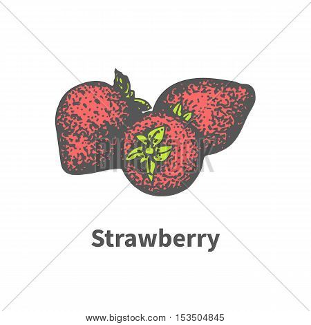 Vector illustration doodle sketch hand-drawn three juicy ripe red strawberry with green leaves. Isolated on white background. The concept of harvesting. Vintage retro style. Red berry victoria.