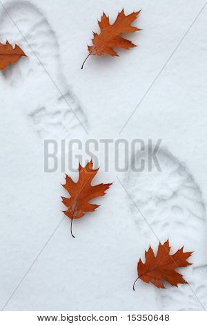 Pasos nevados con hojas de otoño