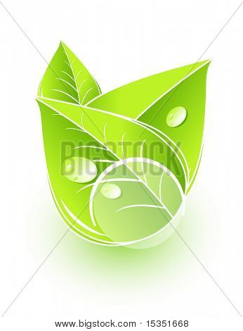 Leaves icon with white circle. Put your symbol into circle