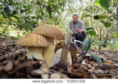 ETNA PARK, SICILY - OCTOBER 25, 2016: smiling mushrooms seeker held between his fingers two little porcini; blurred, on foreground, other two porcini