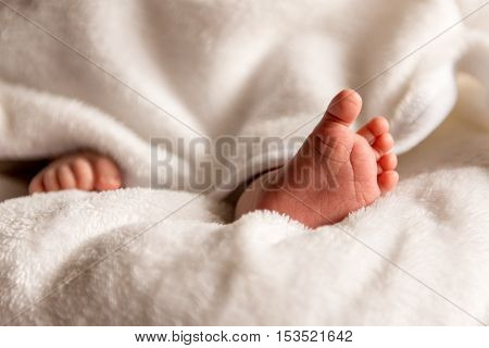 Bare feet of a cute newborn baby in warm white blanket. Childhood. Small bare feet of a little baby girl or boy. Sleeping newborn child.