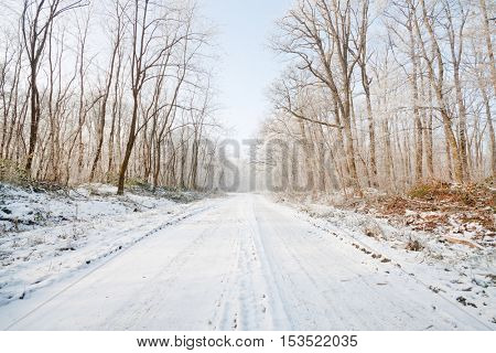 Snowy road on a winter day