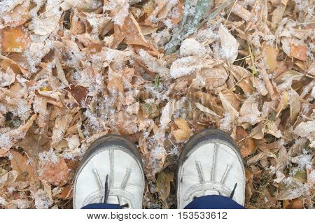Walking Outside After First Snow In The Park.feet Shoes Walking