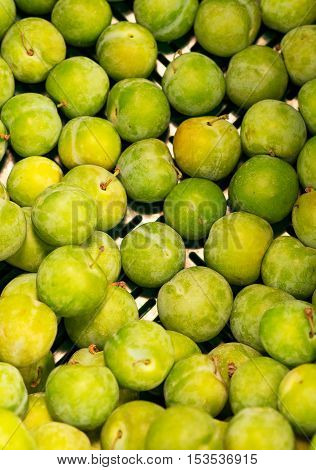 Lots Of Bright Green Plums In Supermarket.