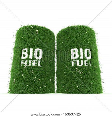 3D Rendering Barrels Of Biofuels
