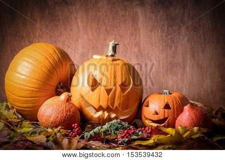 Halloween pumpkins, carved jack-o-lantern in fall leaves. Wooden background