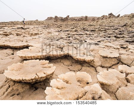 DANAKIL DEPRESSION ETHIOPIA - JUNE 29 2016: People walking across mineral soil formations around sulphur lake Dallol in Danakil Depression Ethiopia the hottest place on Earth.