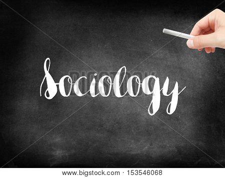 Sociology written on a blackboard