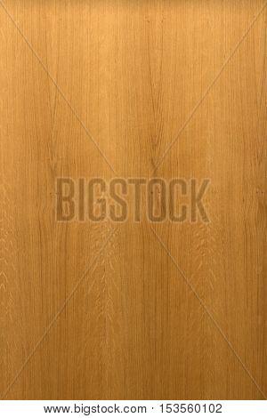 Large Oak Texture