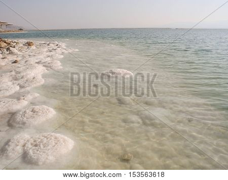 Salt of Dead Sea on the beach in Israel.