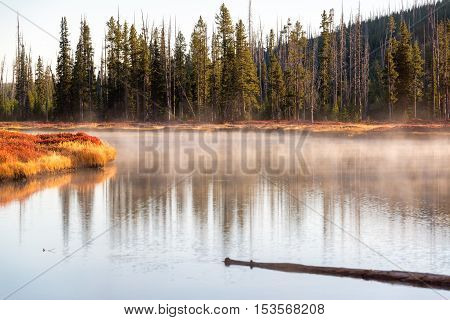 Snake River In Yellowstone
