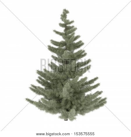 A 3d render of a lone evergreen tree.