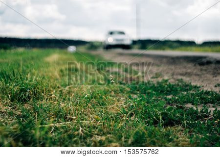 close-up of grass beside the road with a car on the blurred background