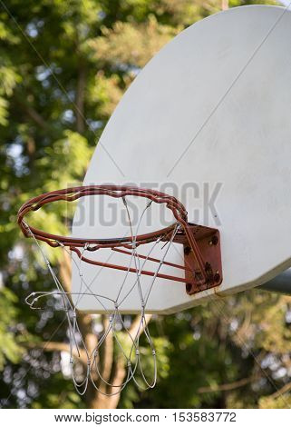 Basketball hoop on a green and sunny background