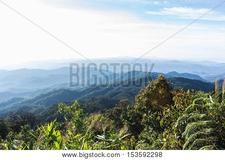 Morning View from Mountain, Pha Daeng National Park in Chiangmai
