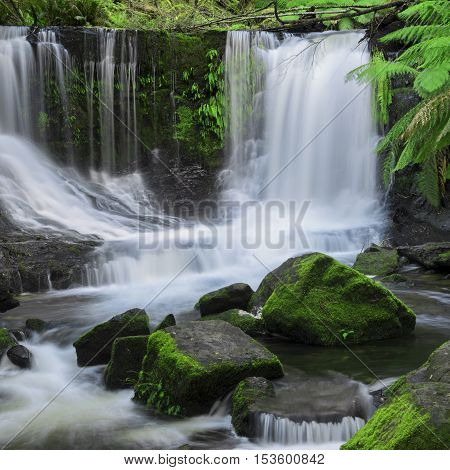 Horseshoe Falls In Mount Field National Park.