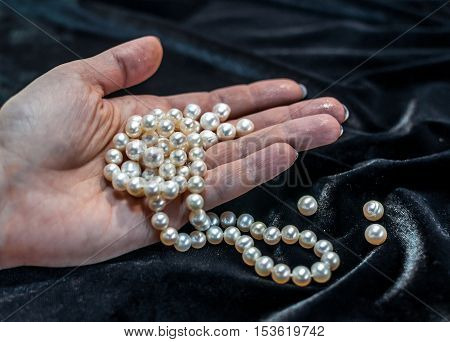White pearl necklace on the woman's hand with black velvet