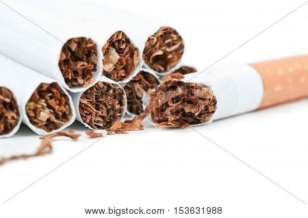 Macro Photo Of Cigarettes
