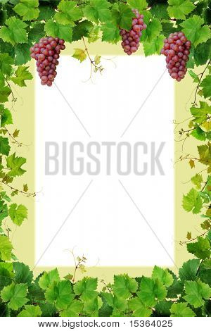 Grapevine frame with pink grapes