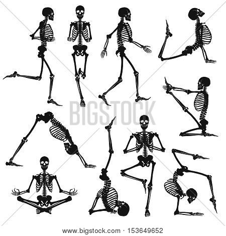 Human skeletons black silhouettes doing gymnastics and yoga asanas isolated on white background flat vector illustration