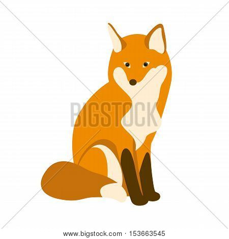 red fox vector illustration style Flat seated