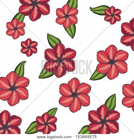 delicate flower pattern background drawing icon image vector illustration design