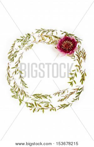 Floral round frame on white background. Flat lay top view. Ornament with gray grefsheim (spiraea cinerea) leaves and nymphaea waterlily purple flower with space for text.