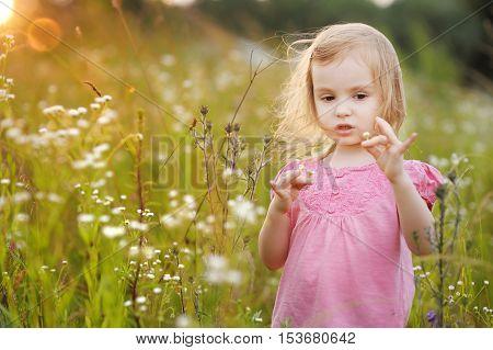 Adorable Preschooler Girl In A Meadow