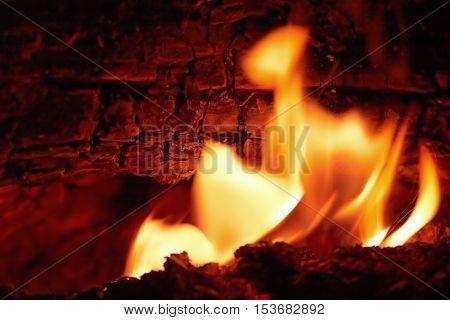 Campfire flames at night closeup