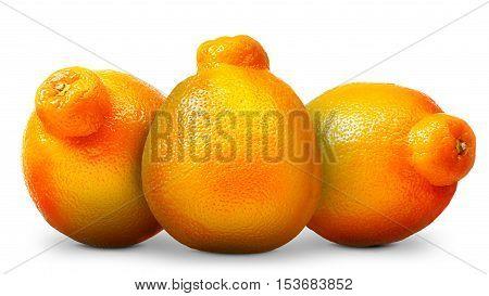 Group of mandarin, tangerine citrus fruit isolated on white background.