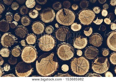 Lumber TImber Trunk Firewood Woodpile Logging Concept