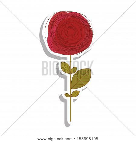 delicate flower drawing icon image vector illustration design
