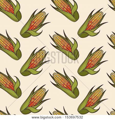 Hand drawn corn cob seamless pattern. Organic food background. Vector illustration