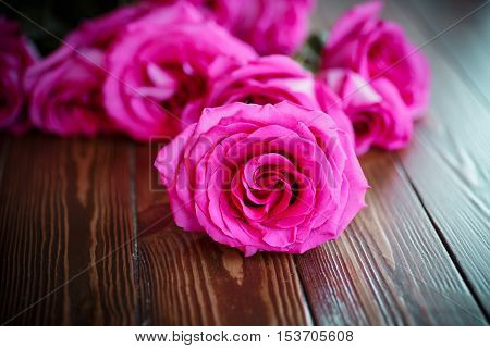 beautiful bright pink roses on a wooden table