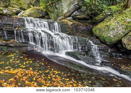 Water cascades over a rocky ledge on Shays Run in West Virginia's Blackwater Canyon.