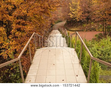 Staircase in autumn park with yellow trees foliage and crumbling