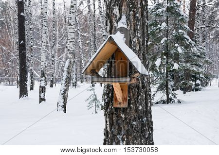 Simple wooden bird feeder in winter forest