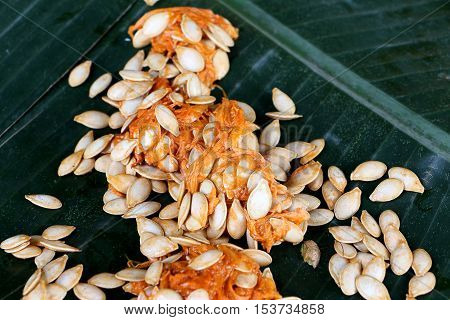 Fresh tropical Pumpkin seeds on banana leaf