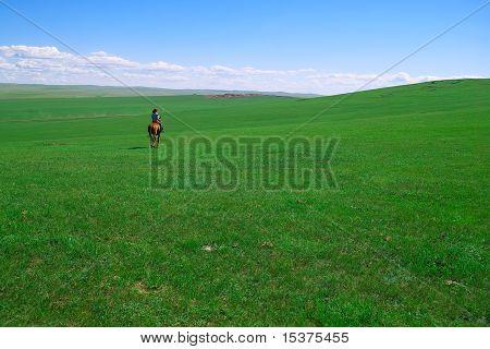 Horseback Rider In Grassland